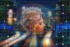 transformation, web, brain